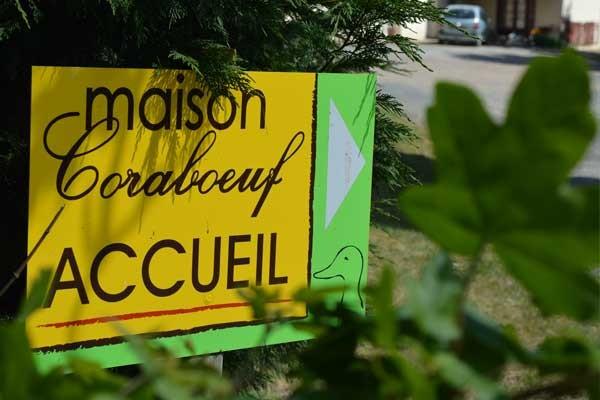 """<p id=""""l6""""><a id=""""lien6"""" href=""""http://www.maison-coraboeuf.fr/content/10-nos-portes-ouvertes"""">Lire</a></p>"""